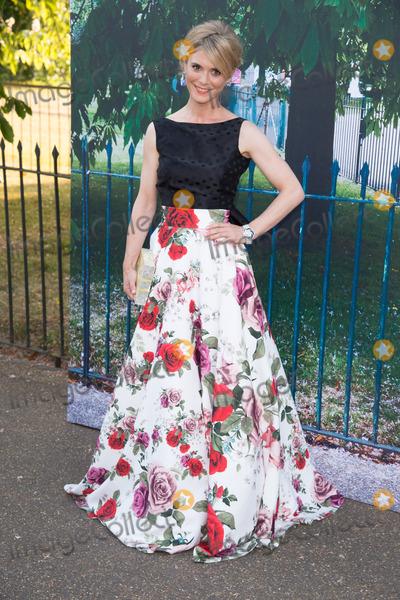 Emelia Fox Photo - Emelia Fox at The Serpentine Gallery Summer Party 2015 at The Serpentine Gallery LondonJuly 2 2015  London UKPicture Steve Vas  Featureflash