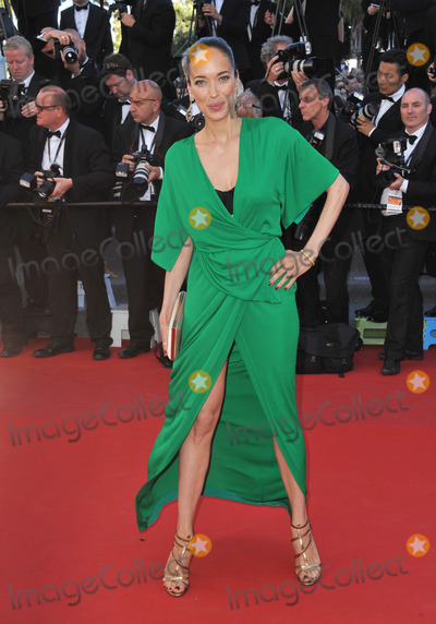 Carmen Chaplin Photo - Carmen Chaplin at the gala premiere for Venus in Fur in competition at the 66th Festival de CannesMay 25 2013  Cannes FrancePicture Paul Smith  Featureflash