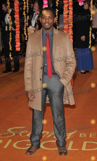 Aml Ameen Photo - London UK Aml Ameen at  The Royal Film Performance and World Premiere of The Second Best Exotic Marigold Hotel at Odeon Leicester Square on February 17 2015 in London Ref LMK315-50611-180215Can NguyenLandmark MediaWWWLMKMEDIACOM