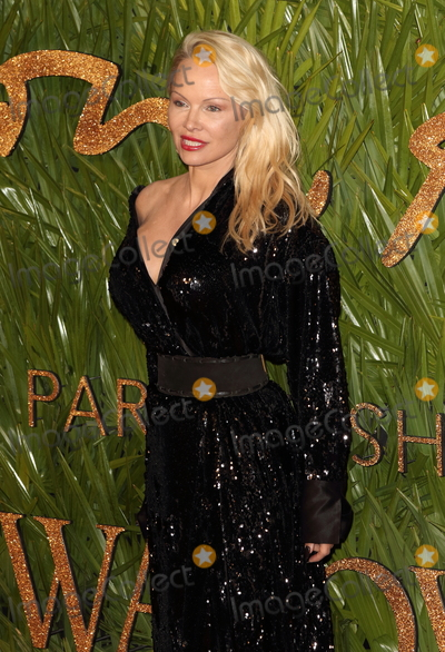 Pamela Anderson Photo - London UK Pamela Anderson at The Fashion Awards 2017 at the Royal Albert Hall Kensington Gore London on Monday 4 December 2017Ref LMK73-J1249-051217Keith MayhewLandmark Media WWWLMKMEDIACOM