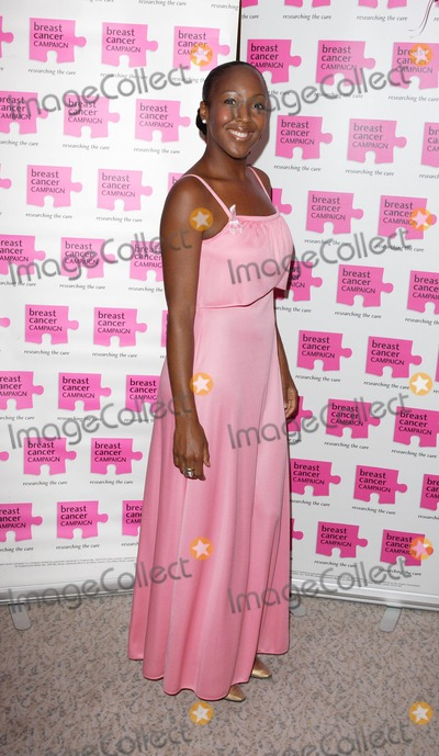 Angellica Bell Photo - London UK Angellica Bell at the Pink Ribbon Ball in aid of the Breast Cancer Research at the Dorchester Hotel Park Lane London 6th October 2007Keith MayhewLandmark Media