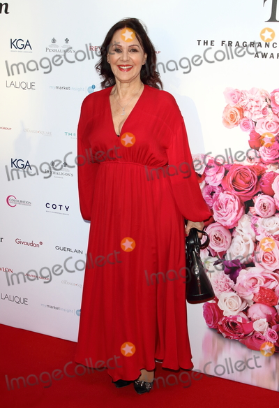 Arlene Phillips Photo - London UK Arlene Phillips at Fifis - Fragrance Foundation Awards 2019 at The Brewery Chiswell Street London on May 16th 2019Ref LMK73-J4890-170519Keith MayhewLandmark MediaWWWLMKMEDIACOM