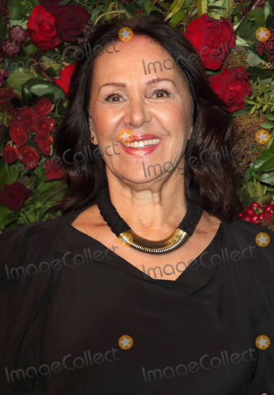 Arlene Phillips Photo - London UK Arlene Phillips  at the 65th Evening Standard Theatre Awards London Coliseum London England on the 24th  November 2019Ref LMK73-S2621-251119Keith MayhewLandmark MediaWWWLMKMEDIACOM