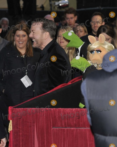 Miss Piggy Photo - London UK Ricky Gervais Kermit The Frog  Miss Piggy at the VIP screening of The Muppets Most Wanted at The Curzon Mayfair in London on March 24 2014Ref LMK315-47972-250312Can NguyenLandmark MediaWWWLMKMEDIACOM