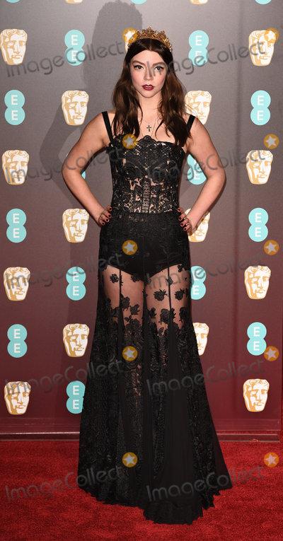 Anya Taylor-Joy Photo - London UK Anya Taylor-Joy at The EE British Academy Film Awards held at The Royal Albert Hall on Sunday 18 February 2018 Ref LMK392 -J1596-190218Vivienne VincentLandmark Media WWWLMKMEDIACOM