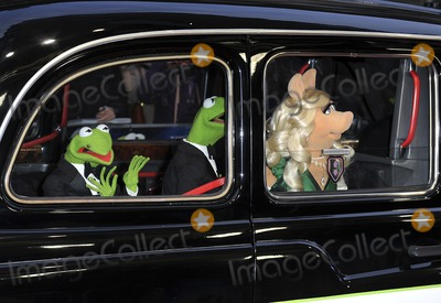 The Muppets Photo - London UK Constantine Kermit The Frog and Miss Piggy at the VIP screening of The Muppets Most Wanted at The Curzon Mayfair in London on March 24 2014Ref LMK386-47971-250312Gary MitchellLandmark MediaWWWLMKMEDIACOM