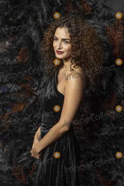 Anna Shaffer Photo - London UK Anna Shaffer  at the World Premiere of Netflixs The Witcher at Vue West End on December 16 2019 in London EnglandRef LMK386-J5940-171116Gary MitchellLandmark MediaWWWLMKMEDIACOM