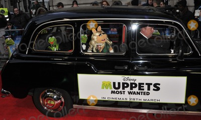 The Muppets Photo - London UK Kermit The Frog  Miss Piggy  at the VIP screening of The Muppets Most Wanted at The Curzon Mayfair in London on March 24 2014Ref LMK315-47972-250312Can NguyenLandmark MediaWWWLMKMEDIACOM
