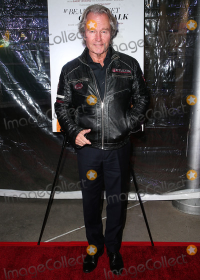 John  Savage Photo - HOLLYWOOD LOS ANGELES CA USA - DECEMBER 04 Actor John Savage arrives at the Los Angeles Special Screening Of Annapurna Pictures If Beale Street Could Talk held at ArcLight Hollywood on December 4 2018 in Hollywood Los Angeles California United States (Photo by Image Press Agency)