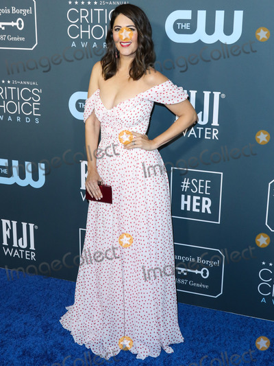 Tadashi Shoji Photo - SANTA MONICA LOS ANGELES CALIFORNIA USA - JANUARY 12 Actress DArcy Carden wearing a Tadashi Shoji gown Irene Neuwirth jewelry and Schutz shoes while carrying a Judith Leiber bag arrives at the 25th Annual Critics Choice Awards held at the Barker Hangar on January 12 2020 in Santa Monica Los Angeles California United States (Photo by Xavier CollinImage Press Agency)