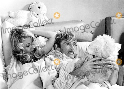 Peter O Toole Photo - Peter Otoole in My Favorite Year 1982 Supplied by Globe Photos Inc Peterotooleretro