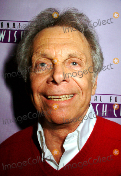 Alan King Photo - the National Foundation of Jewish Culture to Present the Fifth Annual Alan King Award in American Jewish Humor to Mort Sahl at the Mandarin Oriental Hotel in New York City 12042003 Photo by Mitchell LevyrangefinderGlobe Photos Inc 2003 Mort Sahl