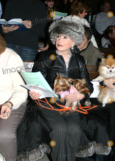 The Animals Photo - Blessing of the Animals at Central Presbyterian Church on 64th Street and Park Avenue New York City 12-18-2005 Photo by William Regan-Globe Photos Inc Cindy Adams