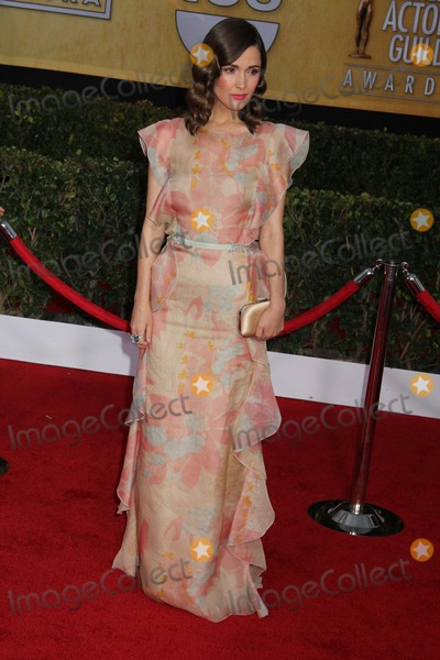 Rose Byrne Photo - 19th Annual Screen Actors Guild Awards the Shrine Auditorium Los Angeles CA 01272013 Rose Byrne Photo Clinton H Wallace-Globe Photos Inc