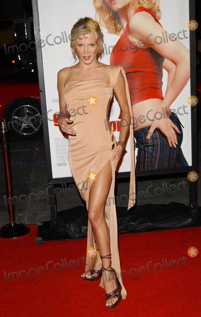 Amanda Swiston Photo - the Girl Next Door World Premiere at Manns Grauman Chinese Theatre in Hollywood California 030404 Photo by Fitzroy BarrettGlobe Photos Inc2004 Amanda Swiston