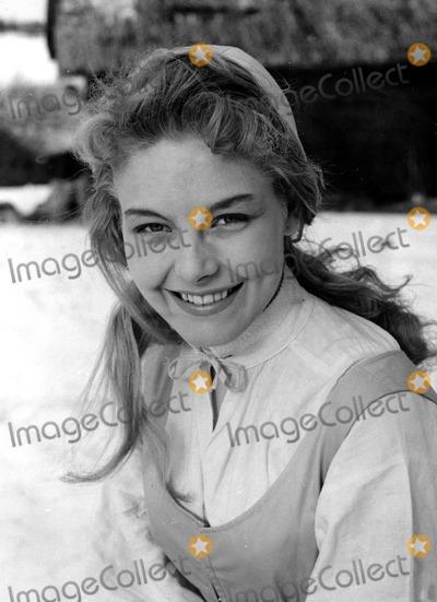 Anita Ekberg Photo - Anita Ekberg Globe Photosinc