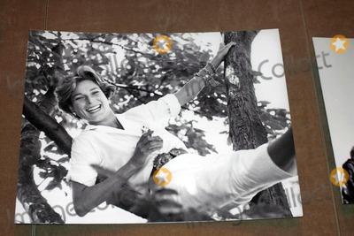 Nan Kempner Photo - Memorial Service For Nan Kempner at Christies New York City 09-23-2005 Photo by William Regan-Globe Photos 2005 Pictures of Nan Kempner