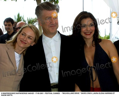 Laura Elena Harring Pictures and Photos