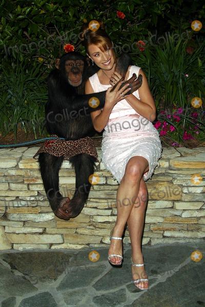 Angel City Photo - Jane Seymour with a Chimpansee Named Angel - City Hearts Fundraiser at the Truffle Dinner - Estate of Jane Seymour Malibu CA - February 01 2003 - Photo by Nina PrommerGlobe Photos Inc2003
