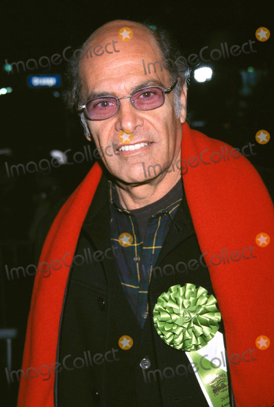 Alan Rachins Photo -  70th Annual Hollywood Christmas Parade Roosevelt Hotel Hollywood CA 11252001 Alan Rachins Photo by Ed GellerGlobe Photosinc