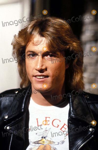 Andy Gibb Photo - 1980 Andy Gibb Photo by Jerry WolfeGlobe Photos