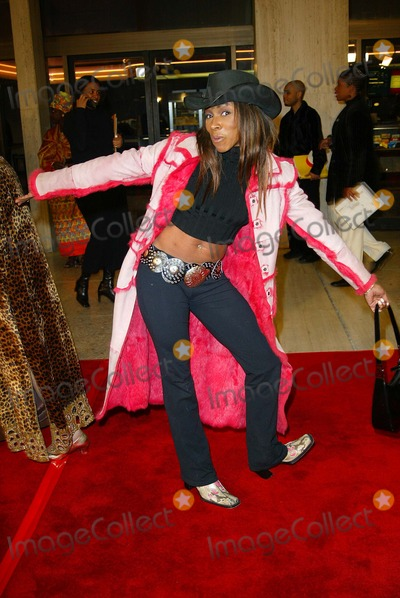 Adrienne-Joi Johnson Photo - Crazy As Hell Premiere at Loews Cineplex Odeon Theater in Los Angeles Aj Johnson (adrienne-joi Johnson) Photo by Fitzroy Barrett  Globe Photos Inc 2-6-2002 K23968fb (D)