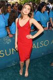 Photo - The Sun Is Also A Star World Premiere