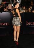 Photo - The Twilight Saga Breaking Dawn Part 1