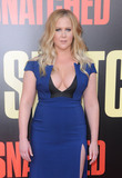 Amy Schumer Photo 5