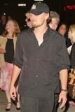 Leo DiCaprio Photo 5