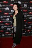 Evanescence Photo 5