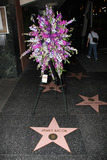 American Authors Photo - The Hollywood Walk of Fame star dedicated to American author Associated Press journalist and actor James Bacon  Bacon who passed away on September 18 aged 96 was known for his work that chronicled the lives of Hollywoods most famous stars Los Angeles CA 092010