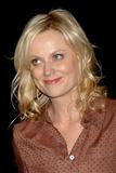 Amy Poehler Photo 5