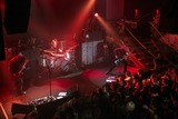 Seether Photo 5
