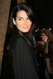Angie Harmon Photo 5