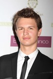 Ansel Elgort Photo 5