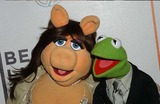 Miss Piggy Photo 5