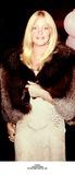 Goldie Photo 5